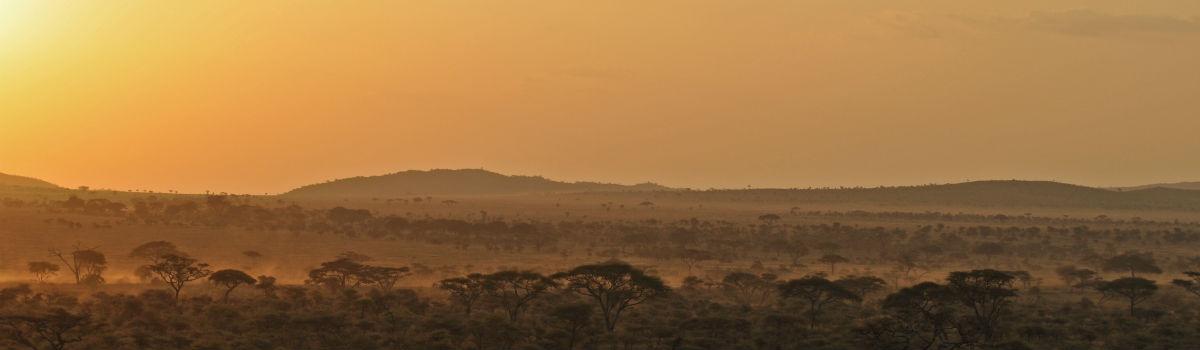Tanzanias flotte natur og safariland